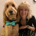 Buddy | Registered Therapy Dog | Anxiety & Depression | Houston, TX 77008